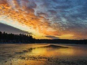 Henry David Thoreau Şiirleri - Walden